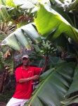 Sweeny Tour Guide Botanical Gardens